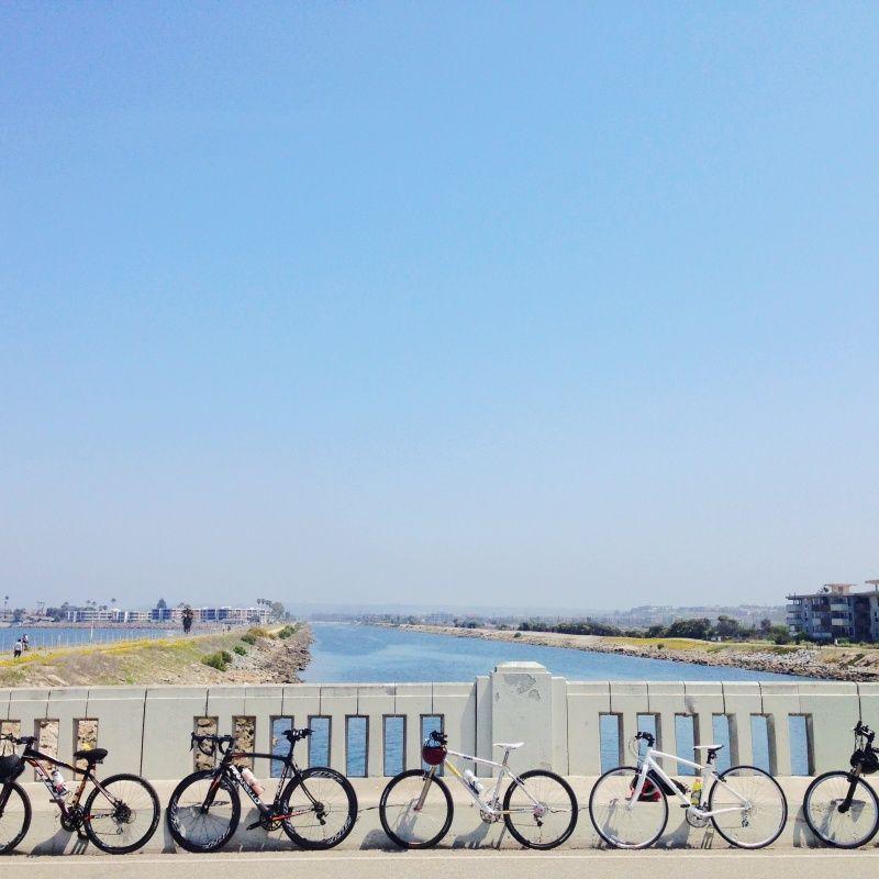 Summer cycle