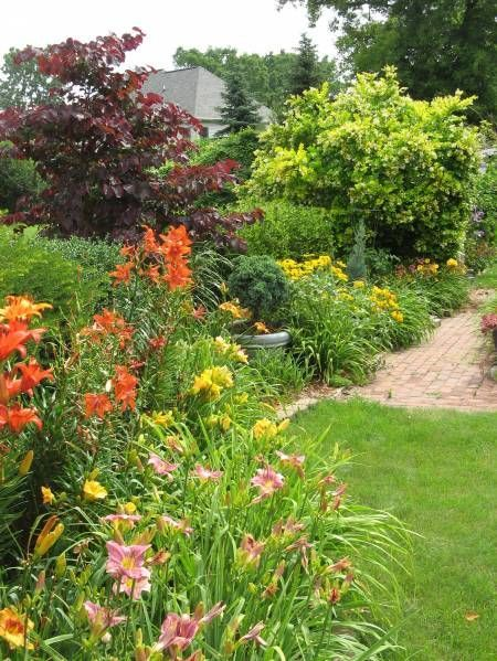 Three Simple Tips For A Beautiful Ornamental Garden Bed | Backyard  Gardening Blog