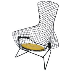 Harry Bertoia Bird Chair  sc 1 st  Pinterest & Harry Bertoia Bird Chair | Harry bertoia Mid-century modern and Mid ...