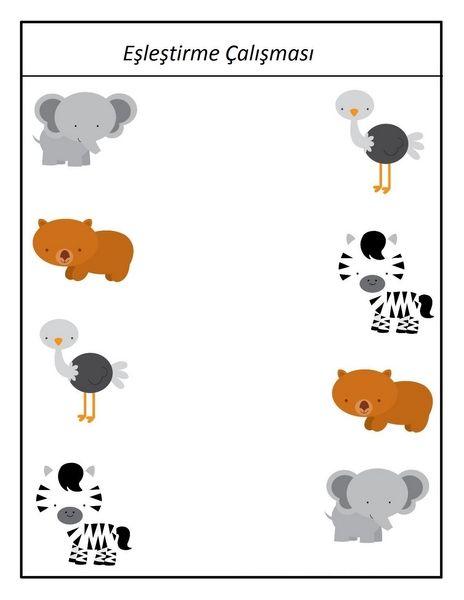 Hayvanat Bahcesi Calismalari Boyama Sayfalari Hayvanlar