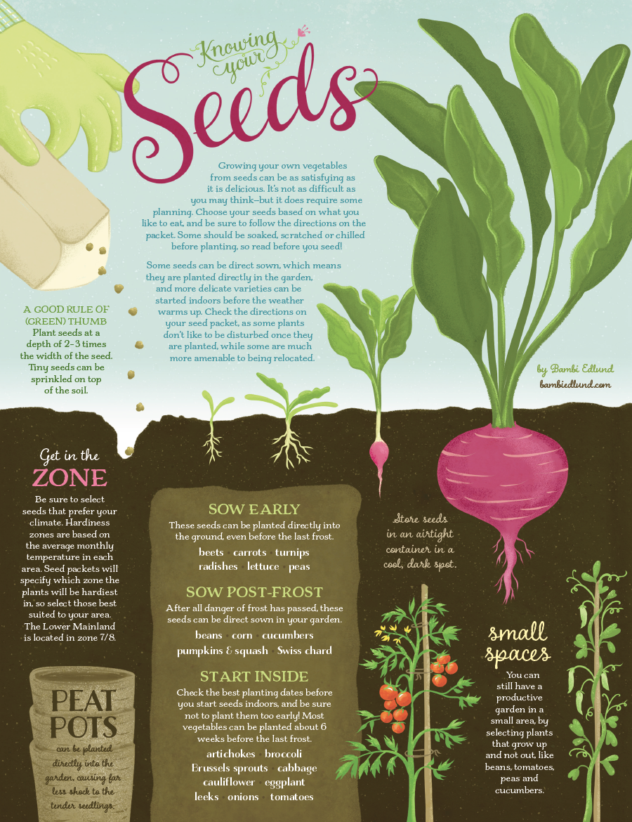 Edible Ink: Knowing Your Seeds | Plan Your Edible Spring Garden ...