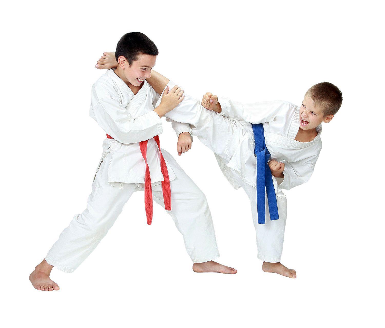Is the goal to teach them selfdefense help them build