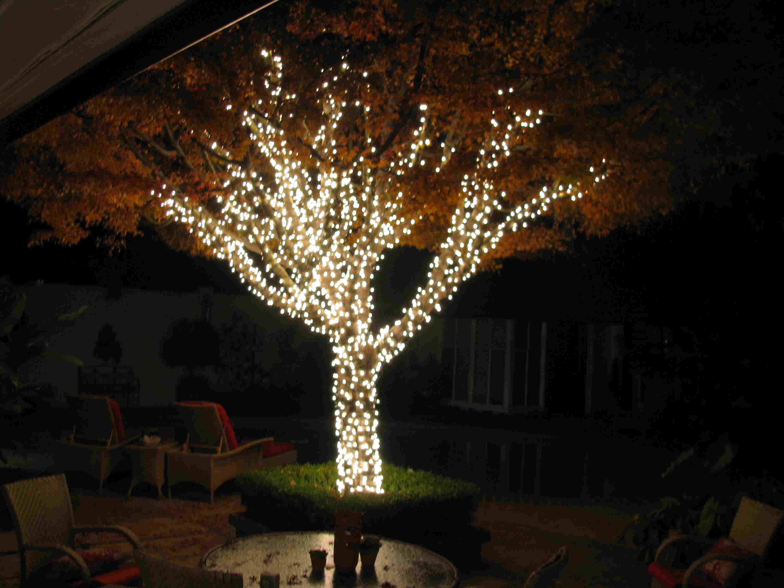 tree lighting ideas. Solar Christmas Lights Outdoor Decoration Inside Measurements 1000 X String For Trees - Lighting Is A Ve Tree Ideas