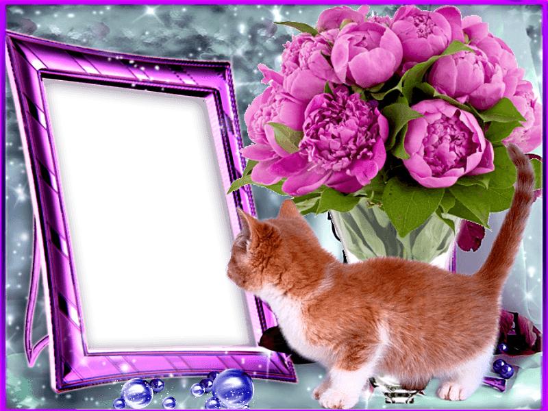 Открытки цветы, 1000 открыток онлайн