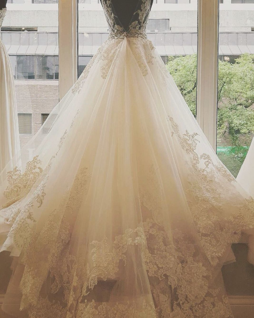 Wedding Gowns Chicago: Lazaro Style 3607 At Bella Bianca Couture Bridal In