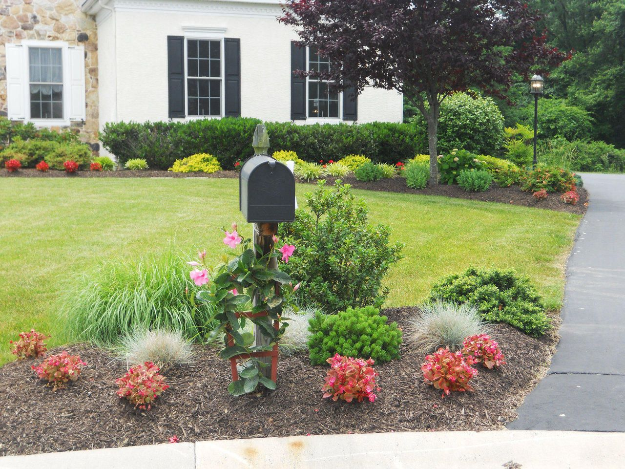Mailbox landscaping google search hmmmm i can see for Garden lawn designs