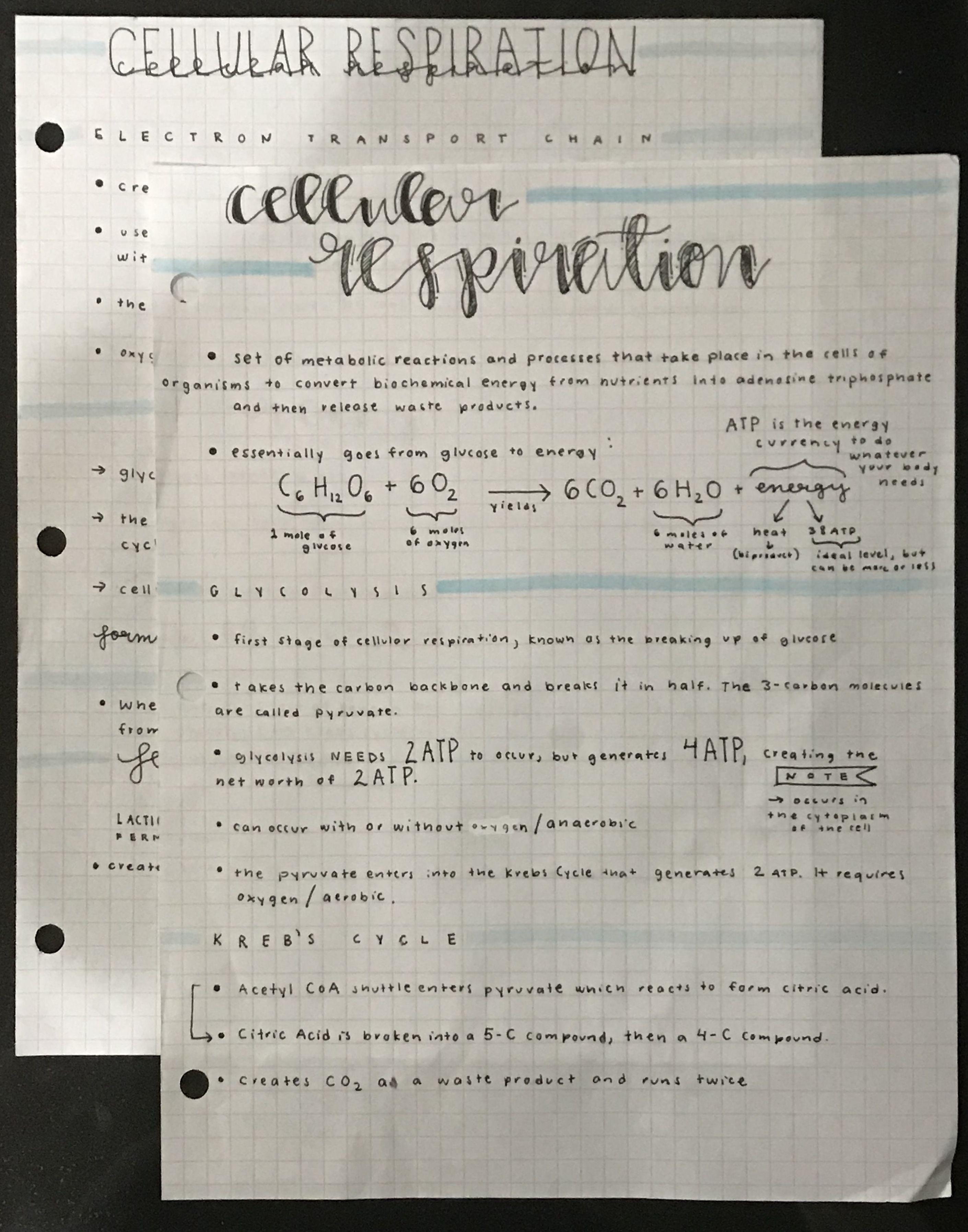 Aesthetic Notes Gcse Science Revision School Goals School Organization [ 3590 x 2821 Pixel ]