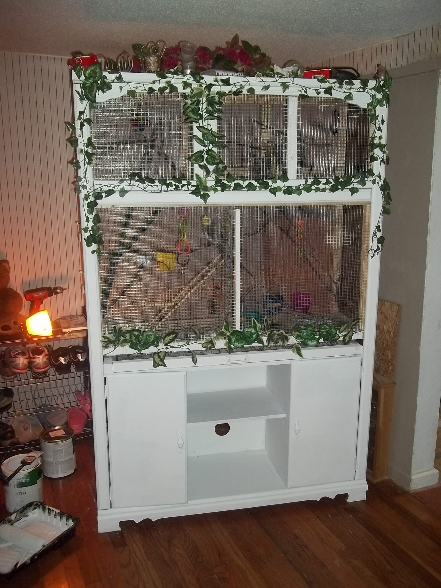 Home Made Bird Aviary ( made from old entertainment center