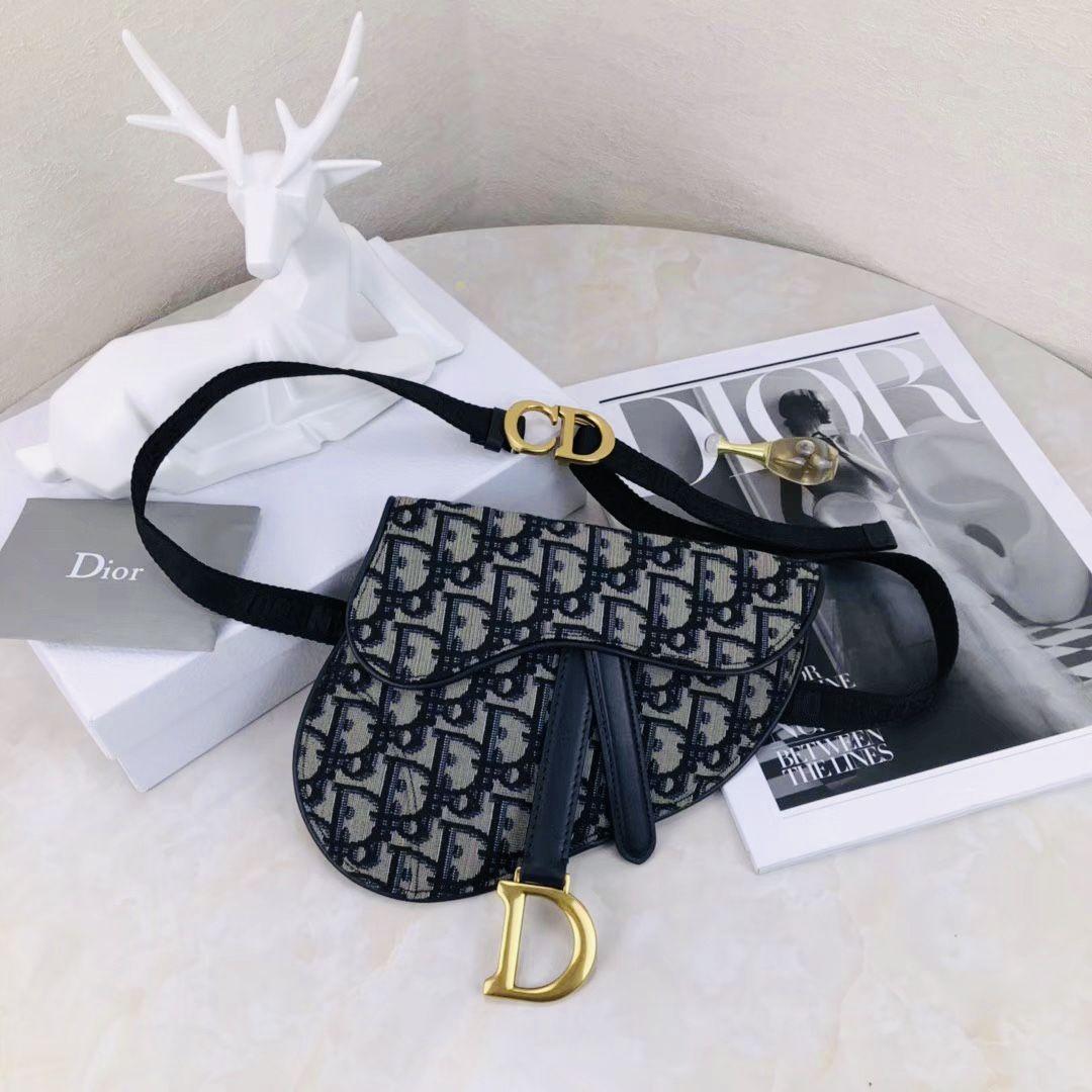 Pin On Dior Bags