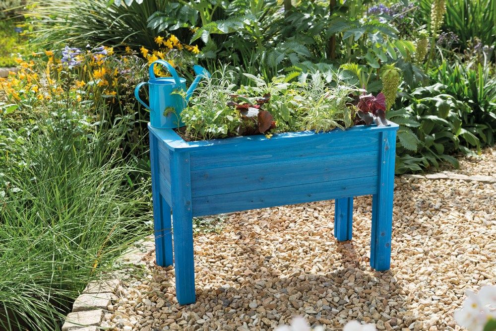 Junior Planter Table Blue Forest Garden GYO For Kids, Get Them Gardening  With This Raised