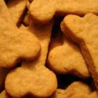 cheddar cheese dog treats! Only when your dog has been very good...