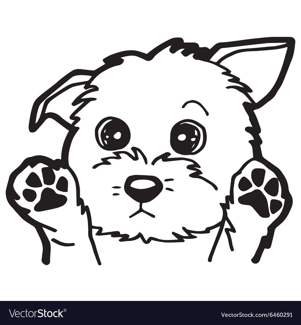 Black And White Cartoon Dog For Coloring Book Vector Image On Vectorstock Dog Coloring Book Dog Coloring Page Puppy Coloring Pages [ 1080 x 1000 Pixel ]