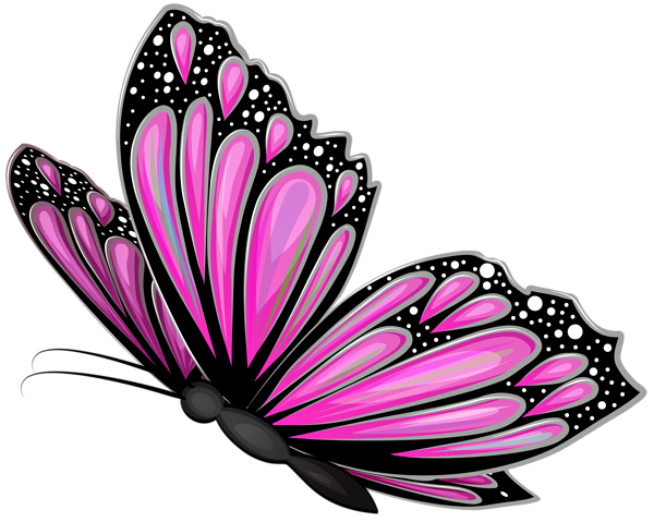 Pink Butterfly Transparent Png Clip Art Image Butterfly Clip Art Beautiful Butterflies Art Pink Butterfly