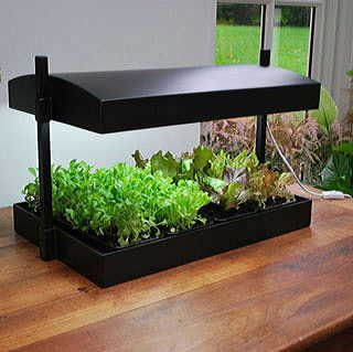 Sunblaster Self Watering Grow Light Garden Indoor Vegetable Gardening Herb Garden In Kitchen Indoor Herb Garden