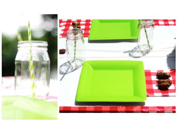 Camping Party  Party In A Box Package by AConfettiOccasion on Etsy, $250.00    Camping party decorations  lime and red  pinecones  gingham print decor  mason jars  striped straws