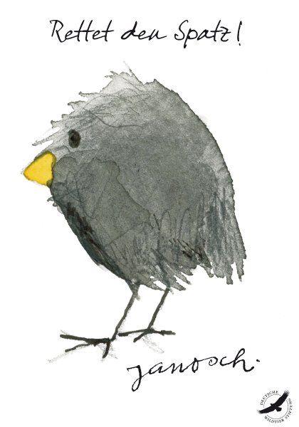 """Little bird in """"The sparrow is my favorite bird"""": Janosch was …"""