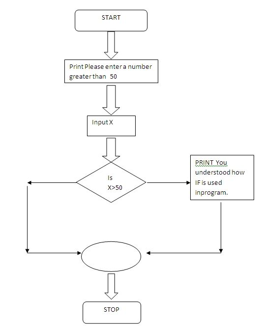 Flow Chart Explaining If And Relational Operators In Ansic Thats