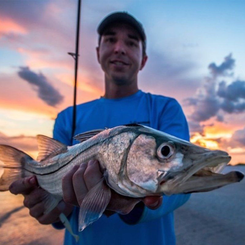 Catching snook from the beach. snook fishing