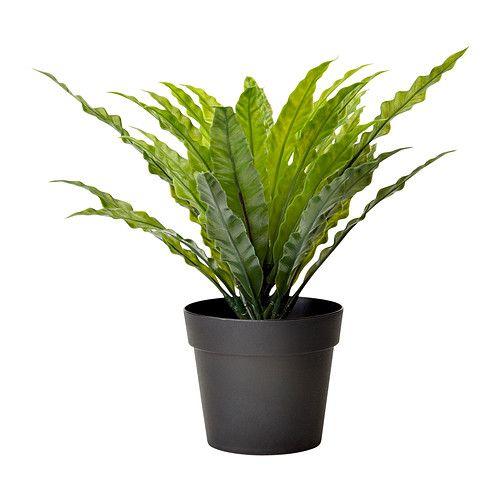 FEJKA Plante artificielle en pot - IKEA_BATHROOM