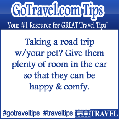 Taking a road trip w/your pet? Give them plenty of room in the car so that they can be happy & comfy.  #Travel #TravelTips