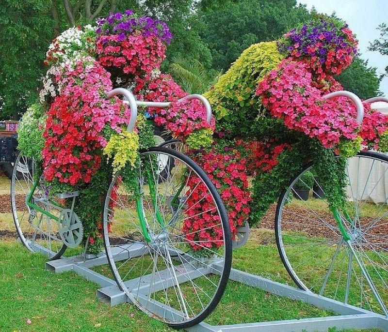 Una bicicleta dañada o que ya nadie usa puede ser un excelente - maceteros para jardin
