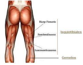 Cómo Fortalecer Los Músculos Atrofiados con Imágenes
