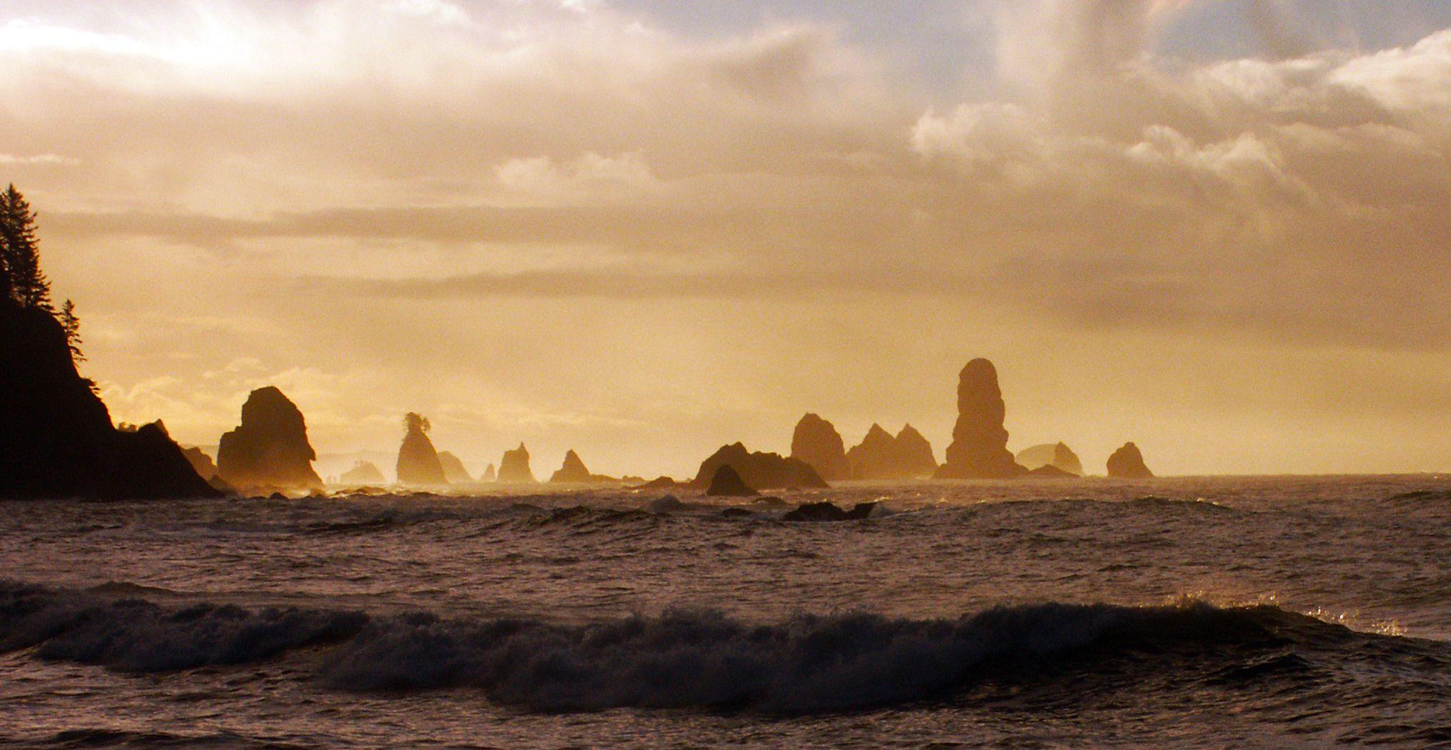 Third beach giants graveyard la push travel pinterest third beach giants graveyard la push nvjuhfo Gallery