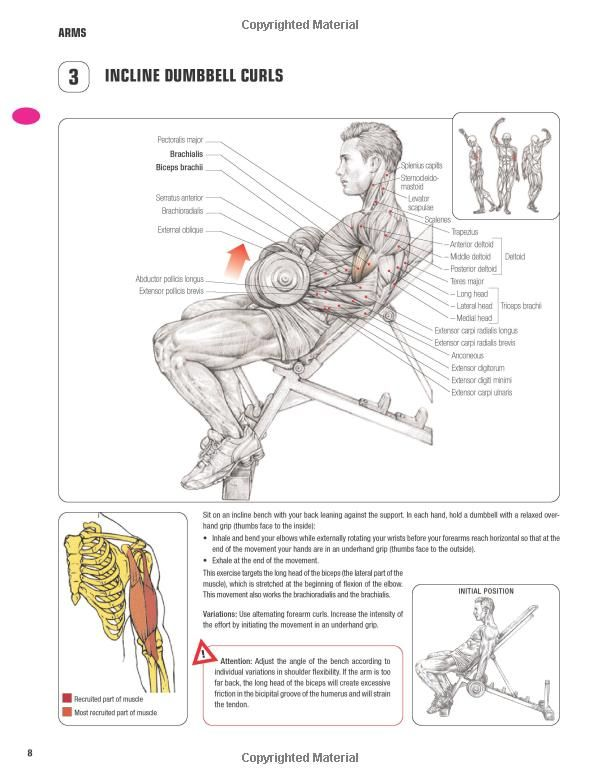 Strength Training Anatomy 3rd Edition Fitness Pinterest