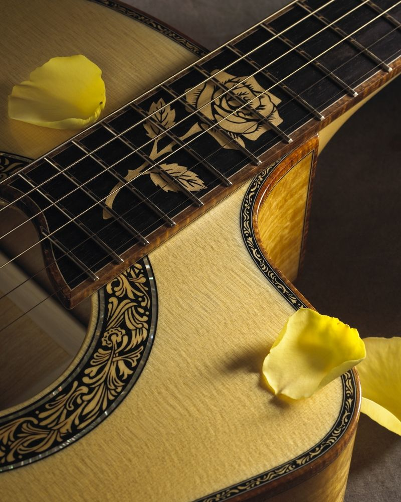 The Yellow Rose by Petros Guitars, Artist