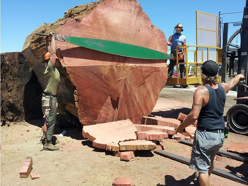 Redwood Kings Dig It Up Then Turn It Out