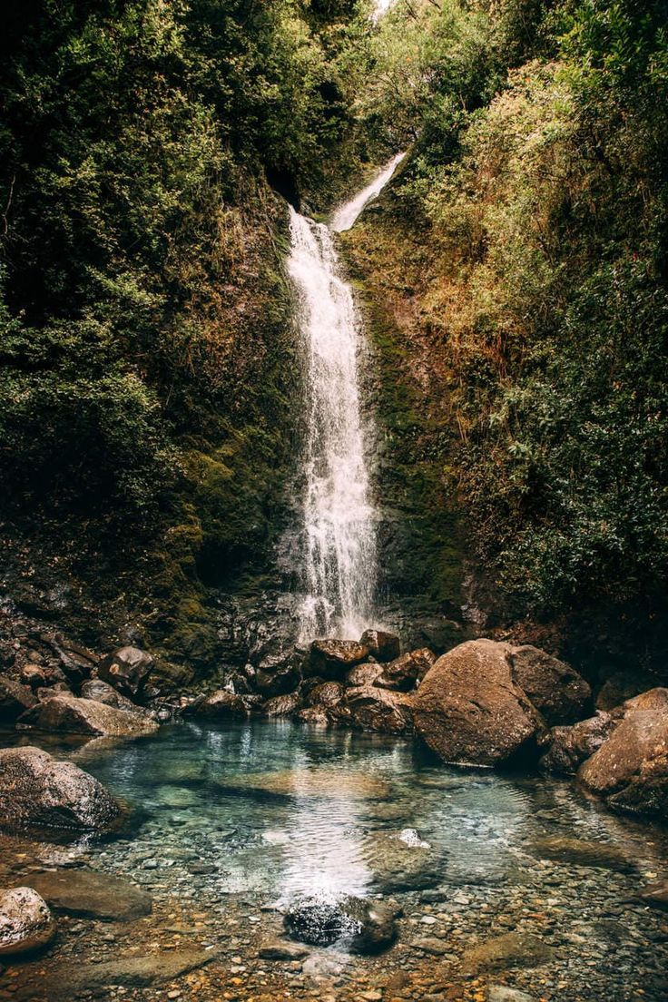 Lulumahu Falls // A Fun Waterfall Hike Through Oahu's Jungle