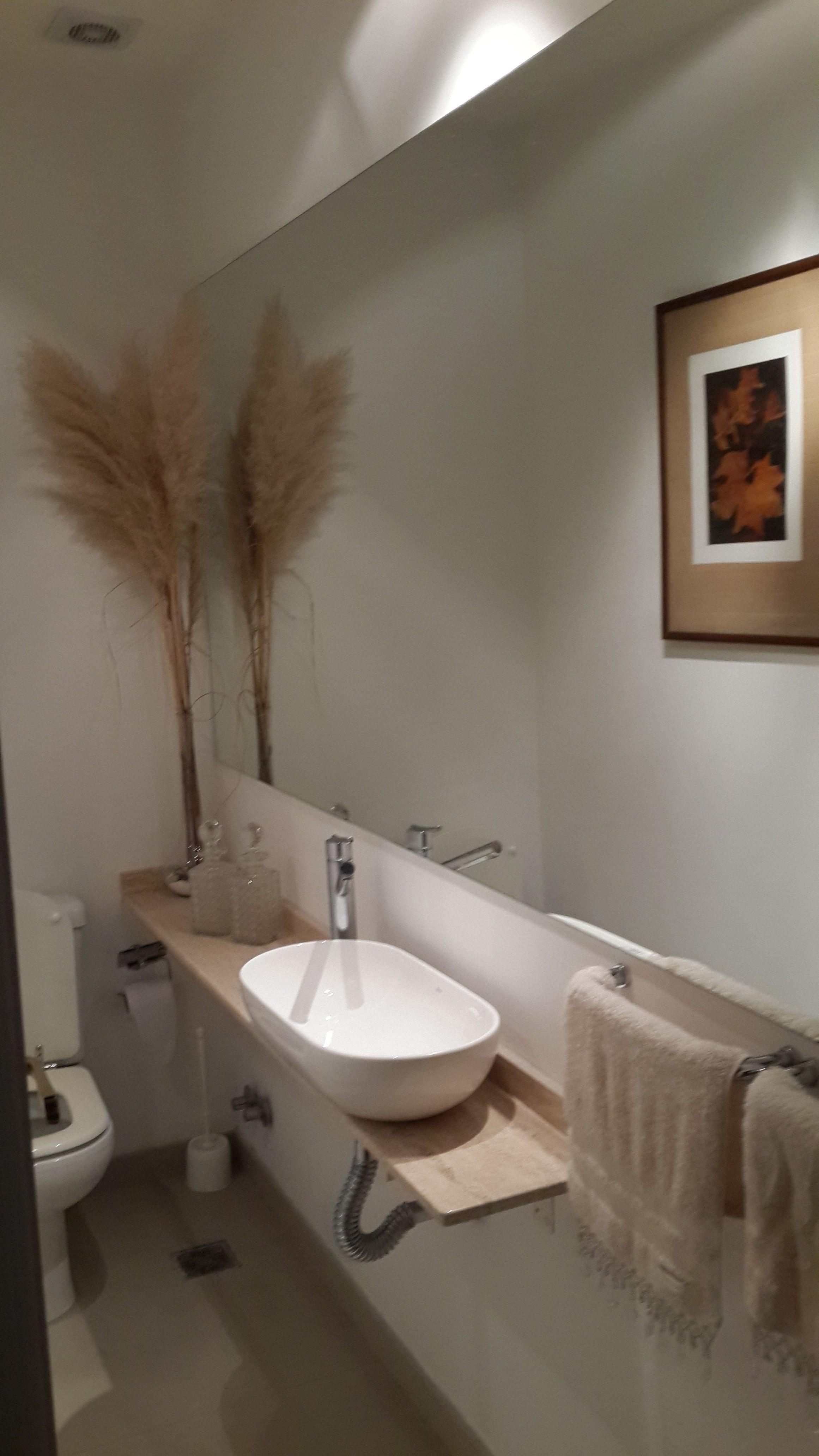 Toilette De Recepcion Disenado En Un Ambiente Muy Angosto Pero