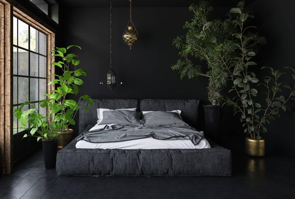 60 Black Interior Design Ideas Black Room Designs Soothing Bedroom Black Master Bedroom Modern Bedroom