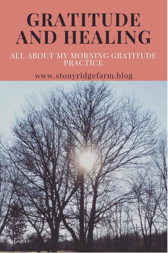 Gratitude and healing, the daily practice of keeping a