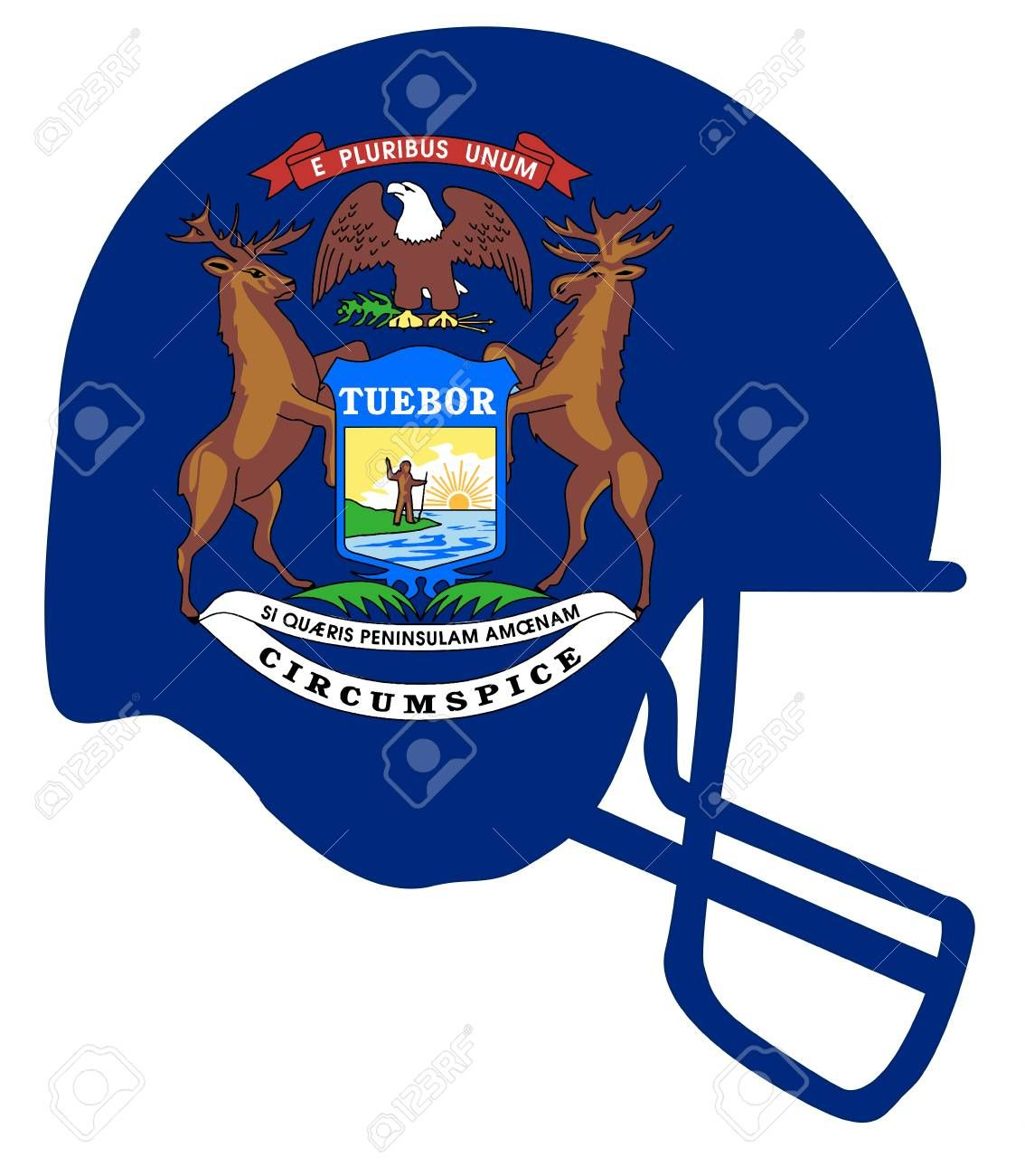 The Flag Of The State Of Michigan Below A Football Helmet Silhouette Sponsored Michigan State Flag Silh Football Helmets State Of Michigan Character