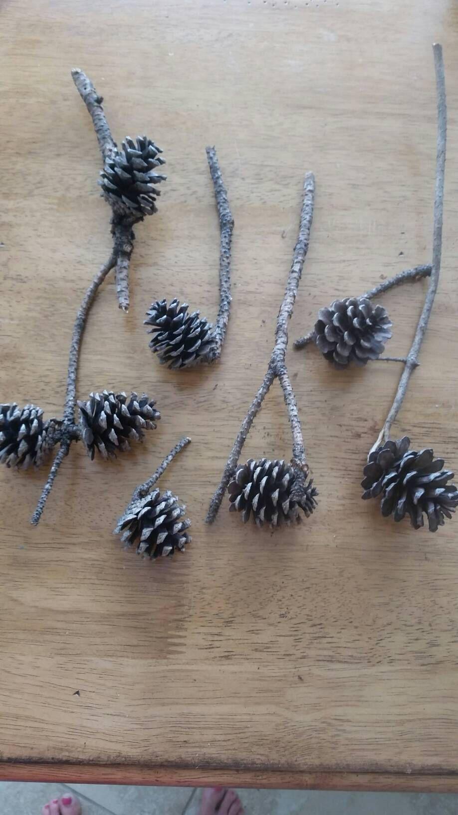 Bulk Pinecones Pine Cones Bulk Pinecone Branch Fall Decor Fall Centerpiece Fall Crafts Bouquet Fall Porch Fall Mini Pinecones Handmade Wreaths