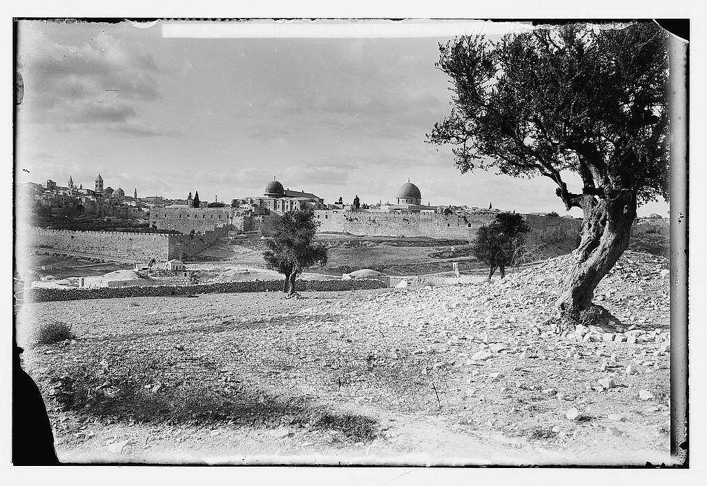 Jerusalem القدس الشريف منظر قديم للمدينة القديمة في الإتجاه الشمالي الغربي اخذ من جبل بطن الهور الموجود اعلى قرية سلوان قبل 1914 Jerusalem