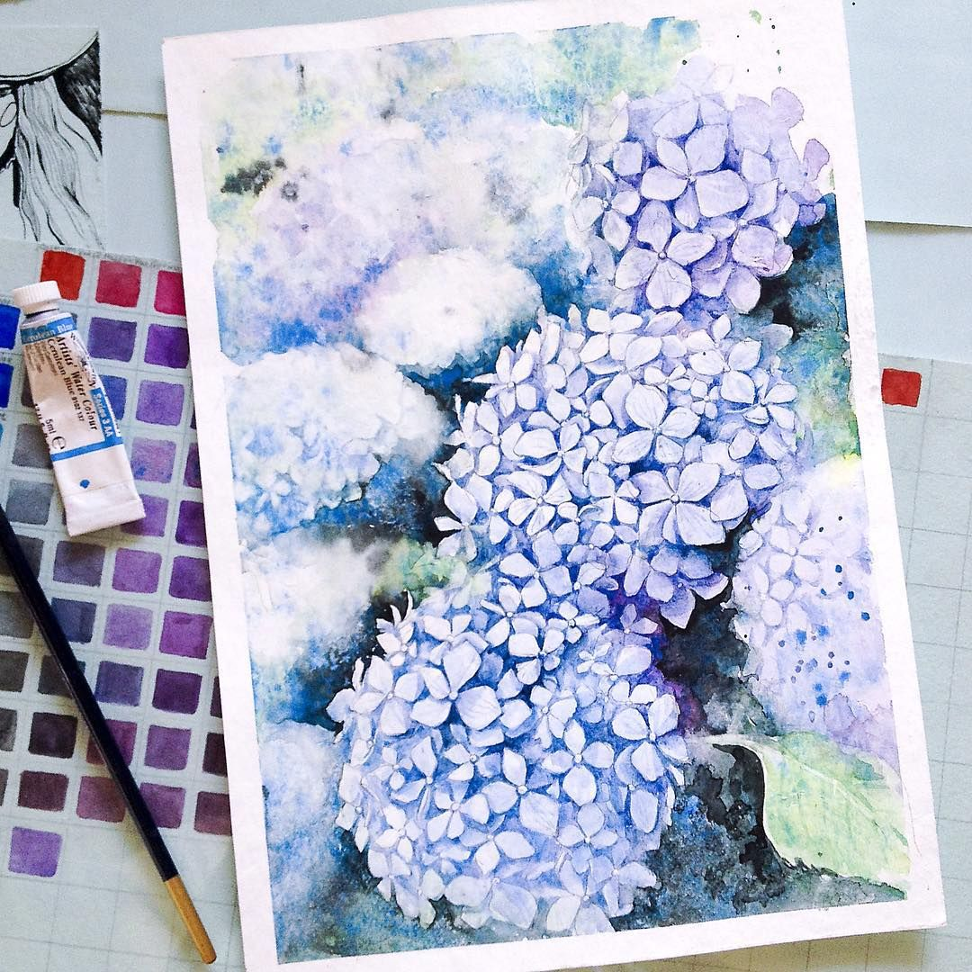 Watercolour Hydrangeas By Russian Artist Elena Moroz Www Instagram