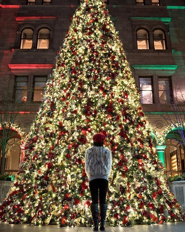 There is nothing I love more than the holiday season in NYC, get ready for a series of the holiday cheers in NYC 😊 📷: @paiks_passport & @sonyalpha . . . . #christmas #christmasinnewyork #newyorkcity #lottepalace #dametraveler #sheisnotlost #girlsthatwander #stayandwonder #travelstoke #traveldeeper #pursuepretty #lastingvisuals #whatisawinnyc #lovenyc #visitnyc #girlslovetravel #ladiesgoneglobal #christmastree #beautifulmatters #beautifuldestination #curioustravelers02x #mytinyatlas #letsgoever