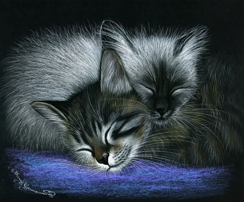 Спи крепко картинки красивые