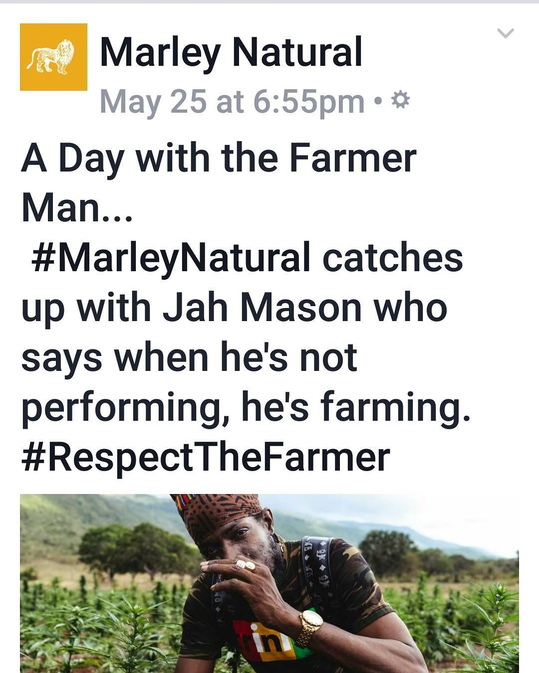 """IN THE NEWS!!!  #MarleyNatural interview """"We have to get green and take care of our Temple."""" #JahMason #FarmaMan #Jamaica #Medicinal  full interview and photos  http://ift.tt/2qEJYxC"""