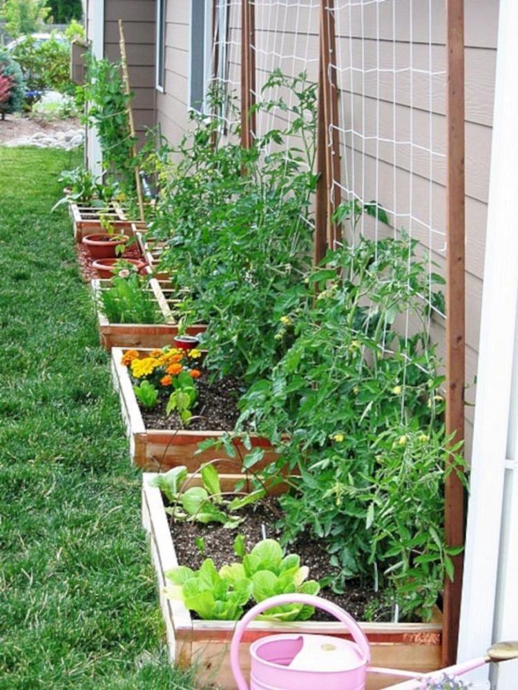 40 Diy Vegetable Garden Ideas Garden Outdoor Living Vegetable