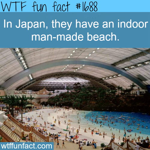 Indoor Beach In Japan WTF Fun Facts WTF Facts ミoωノ - Indoor man made beach japan incredible
