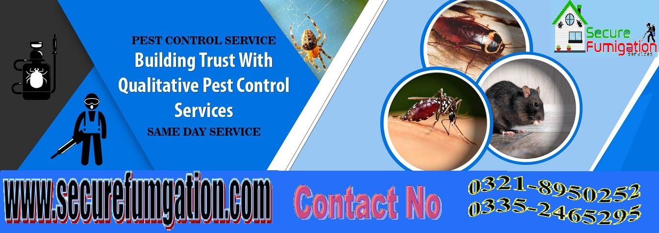 Pest Control Services in 2020 Pest control bed bugs