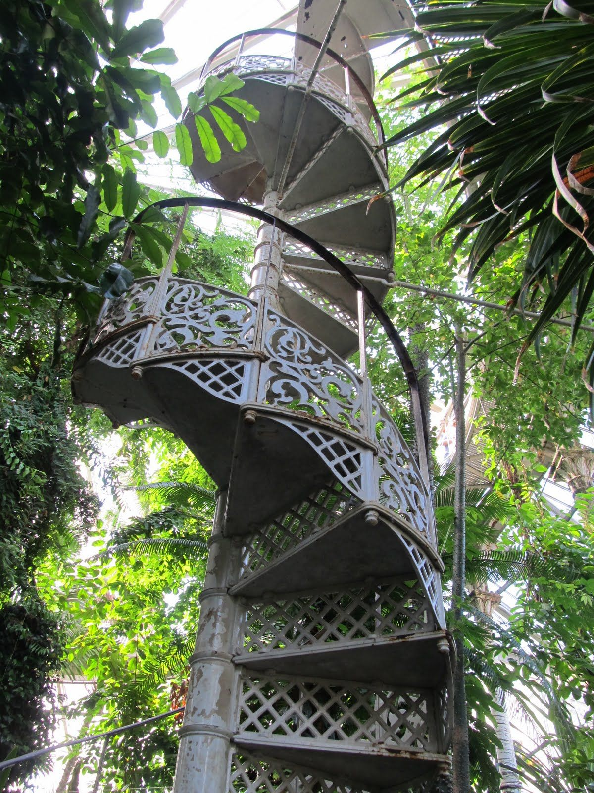 Copenhagen botanical gardens tropical greenhouse spiral for Indoor botanical gardens