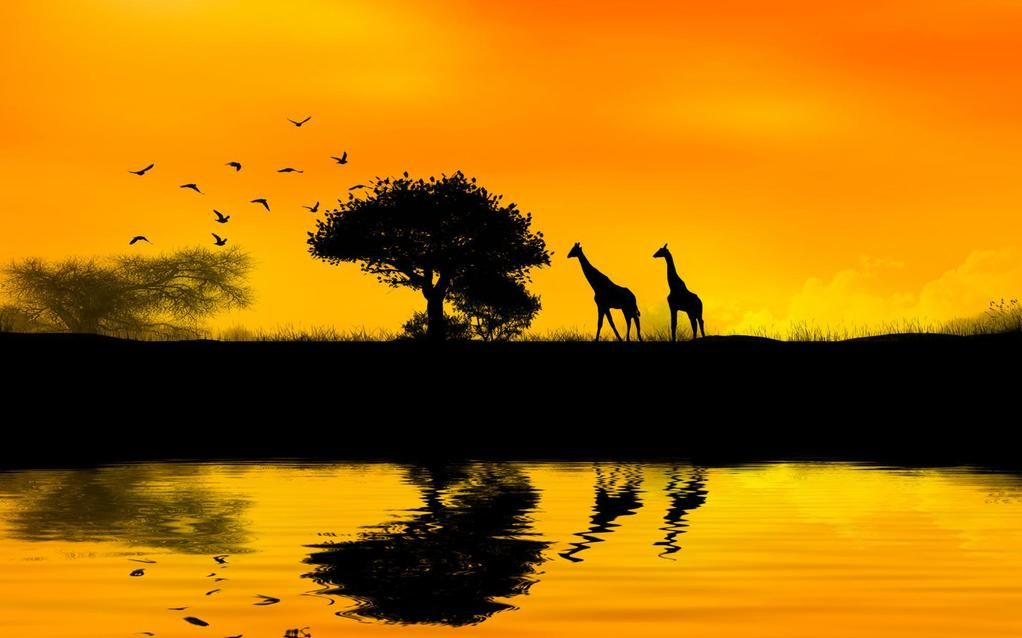 Pep Blanc On Twitter Africa Sunset Sunset Wallpaper Sunset Pictures Art photography wallpaper hd