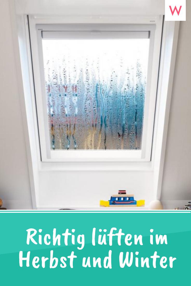 Warum Das Luften Auch Bei Regen Sinnvoll Ist Dachfenster Fenster Regen