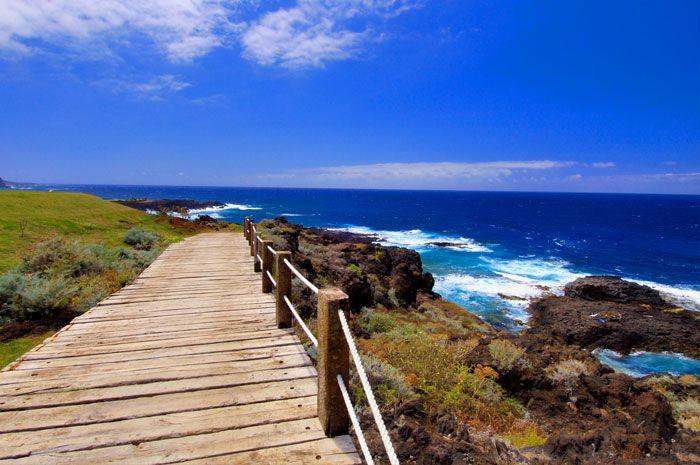 Vincci Tenerife Golf Hoteles Tenerife Tenerife Islas Canarias