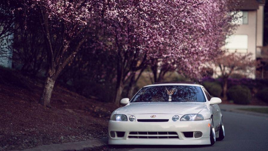 Beautiful Lexus Sc Car Hd Wallpaper Download With Images Lexus