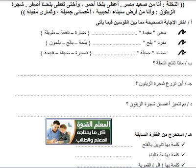 حمل كراسة المراجعة النهائية لغة عربية الصف الثاني الإبتدائي الترم الأول كراسة إعداد أمنية وجدي حسين Vocab Teaching Education